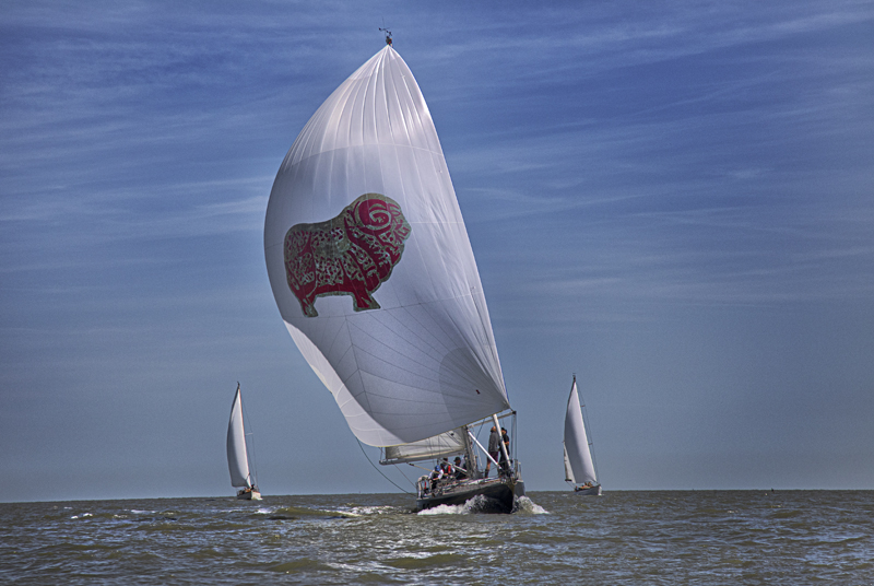 Champagne sailing at the 2019 SYH Classic Regatta